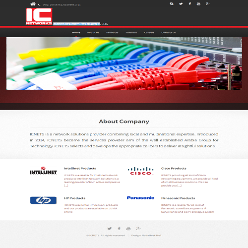 Integrating Consulting Networks website